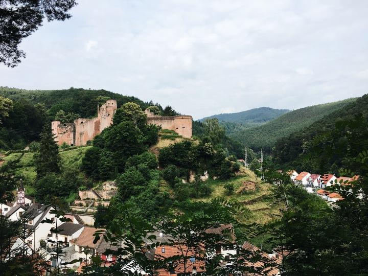 Blick auf die Hardenburg